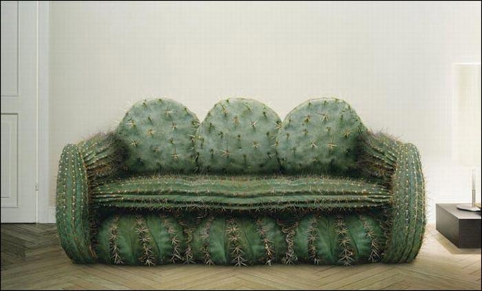 Kaktusoviy-divan